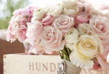 Wedding day / Inspirations for wedding day