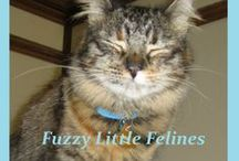 Fuzzy Little Felines / Dedicated to cats and their bizarre and wonderful antics; or just plain adorableness