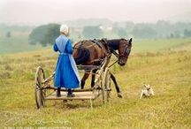 Amish Lifestyle / by Beth Shelby