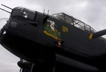 A cahce meeting with Thumper / Up close and personal with a Lancaster