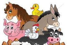 Animals - Pet Care