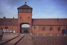 Train des 1000 vers Auschwitz / 1000 jeunes, un train, une destination: Auschwitz-Birkenau - mai 2015
