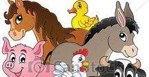 Animals - Farmstead