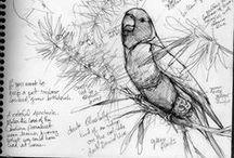 Art Journals / Scrapbooks, sketch books and art journals for daily inspiration