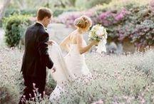 Wedding. / A Love Like Ellie & Carl. / by Sharon Lim