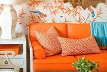Tangerine Tango: Pantone's 2012 Color of the Year / #orange #tangerinetango #color  / by Amanda Carol Interiors