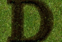 D is for Deborah / by Deborah Churchwell