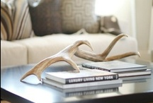 Styling (CoffeeTables, Bookshelves) / #styling  / by Amanda Carol Interiors
