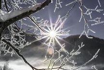 The Sun / by B. Nova
