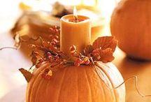 Thanksgiving / by Haley Speicher