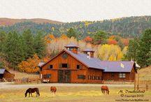 A. Design of Horse Farm - Barn of horses -architecture-stable design / Design of Horse Farm, architectural, design, horse farm, interior architecture, barn of horses, stable design