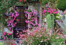 Yard & Garden / From cottage to basic design . There is so much beauty to enjoy :)
