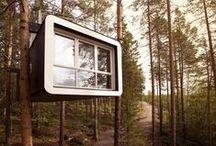 treehouses & log cabins