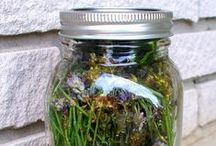 Homemade health and beauty products