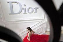 Devine Dior  / everything Dior x