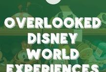 Disney Vacation / When I'm a famous published author, I'm going to Disney World!