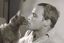 Men with Cats / by Violeta Gonzalez