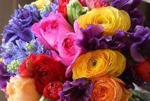 flower arrangements / by Joan Jacobs