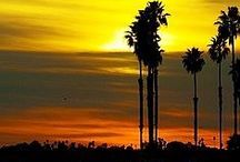 San Diego / America's finest city, San Diego. It has so much to offer - beaches, restaurants, palm trees. Love this city!