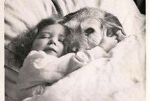 I <3 Dogs / by Cheryl Witherspoon