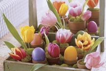 Season - Spring by deeAuvil / all the most beautiful spring image pins
