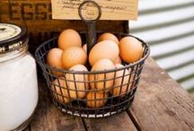 deeAuvil Recipes - Eggs