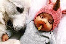 ◦ oeuf ♡ animals ◦ / @oeufnyc loves animals!