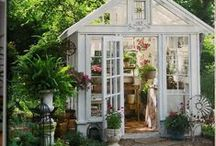 Home-Backyard Mini Cottage