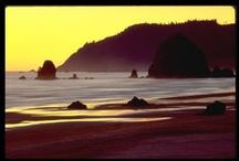 The Oregon Coast  / by Slabtown Consignment