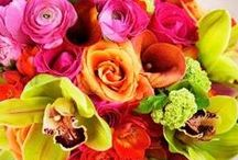 Bouquets / by Miss Flowers