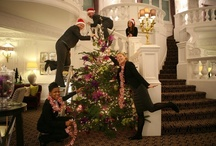 In the spirit of Christmas / Festive Christmas lobbies from our hotel partners the world over.  Please leave us a comment on which you like the best, or just a festive greeting.