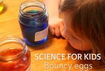 Kids Science Investigations  / Fun science investigations that make kids think. / by Christie @Childhood101