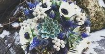 """Blue Wedding Flower Inspiration: Belle Fiori Florist / Blue flowers are rare and beautiful and make the perfect """"something blue"""" for your wedding day. Belle Fiori provides beautiful blue blooms for weddings in Milwaukee, Wisconsin. More information on wedding consultations here: http://bit.ly/2xo4FCc"""