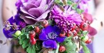 Purple Wedding Flower Inspiration: Belle Fiori Florist / Love purple flowers? So do we! Peruse our pretty purples for inspiration for your Milwaukee Wisconsin wedding. More information on wedding consultations here: http://bit.ly/2xo4FCc