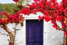 Greece / by Megan Moore