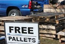Pallets Can Make Anything! / by Louise Smith