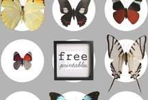 Free Fonts and Printables / by Sheryl Gilbertson