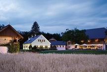 Slovenia / Romantic estates & castle hotels in Slovenia's enchanting countryside