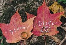 Fall Wedding Theme / by Bridal Party Tees