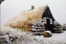 Winter / by Edyta Szyszlo Photography