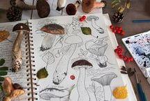 art - drawings / illustrations