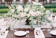 Beyaz Düğün / Romantik ve bembeyaz bir düğün hayal edenlere masa dekorundan gelin buketine kadar fikir verecek en güzel örenkeler burada! / by dugun.com