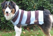 Doggy Fashion and Style / Dress your doggie right! Check out the latest in dog clothing, fashion leashes, and other accessories for your pampered pooch.