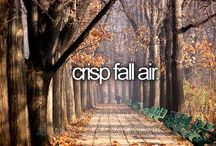 Fall / by Jenny Swift