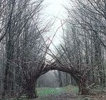A = Environmental/Land Art