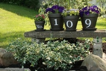 Outdoor/Aesthetic Gardening / by Shannon Johnson