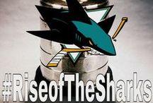 { Shark's Hockey iLove } / by Sara Kobzanets