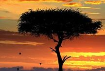Kenya / Photos and articles from Kenya