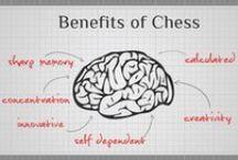 Echecs & Infographie / Mes divers centres d'intérêt illustrés en infographie (jeu d'échecs, référencement, SEO...)