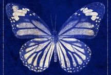 Blue and White / by Lynne Kells